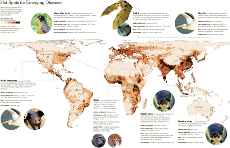 Destroying Nature Unleashes Infectious Diseases - NYTimes.com